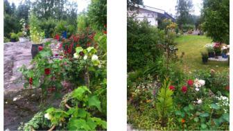 Gun-Britts trädgård i Lindesberg - en av Tusen Trädgårdar på söndag