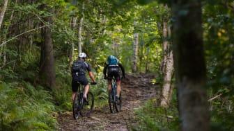 MTB cykling på Kinnekulle. Fotograf Jesper Anhede.