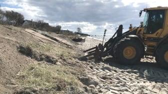 """Vi lägger extra resurser på att bevara och stärka den, bland annat genom att strandråg och strandvial """"transplanteras"""", det vill säga lyfts bort från en plats intill och läggs upp på de nybyggda sanddynerna."""