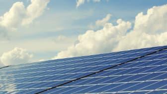 Intresset för solceller har ökat kraftigt