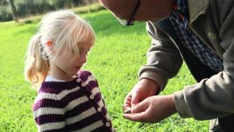 6-årige Merle viser familiens fund til arkæologen under arrangementet 'Detektorfører for en dag', som blev afholdt af Lejre Museum i samarbejde med Lejre Arkæologiske Forening. Foto: Niels Hein