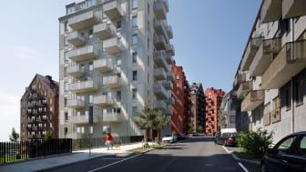 Byggnaderna i det nya området har ett gemensamt uttryck men ges variation i kulör och upplevd byggnadshöjd då de klättrar upp för Albyberget och synliggör landskapets topografi.