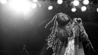 Ziggy Marley klar för Grönanspelning