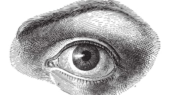 Online-Vortrag: Schlupflider – wenn das Lid zur Last wird