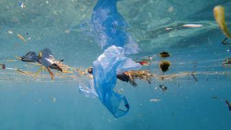 Vem vill bada bland plastpåsar, godispapper och fimpar?