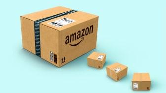 Amazon - Ateles