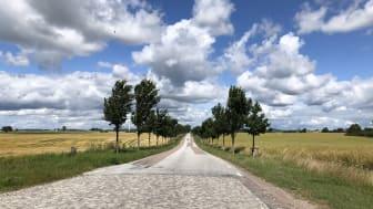 Vägen till Jordberga gods bär mot Hönsinge Hantwerksbryggeri. Foto: Anna Lind Lewin.