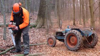 Med Jens og Henrik i skoven, del 1