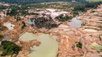 Skovrydning i den brasilianske del af Amazonas er blevet dramatisk forværret på grund af ulovlig skovhugst og minedrift. Foto: Shutterstock