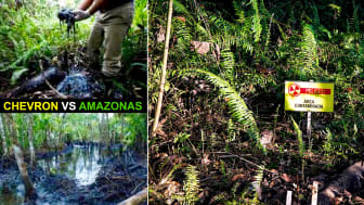 """Transnationella företag kan idag orsaka skador på människor och natur utan möjlighet att utkräva rättsligt ansvar. Fallet """"Chevron vs Amazonas"""" tydliggör behovet en internationell lag mot storskaling miljöförstöring, ekocid. Foto: Amazonas i Ecuador"""