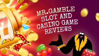 Players have asked Mr-Gamble to honestly review the best game providers and slots for them – and now he has!