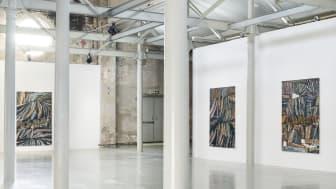 Fredrik Åkum, Beckers Konstnärssttipendium 2020, installationsvy