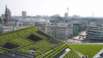 Kontorkomplekset KII er Europas grønneste fasade