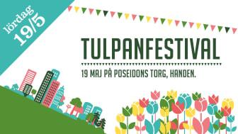Tulpanfestivalen 2018 - Haninge blomstrar