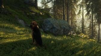 COTW_Bloodhound_PR_HD_5.png