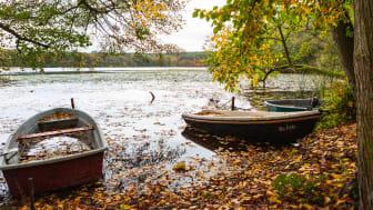 Rund um den Caputher See kann man eine schöne Winterwanderung unternehmen. Foto: TMB-Fotoarchiv/Steffen Lehmann.