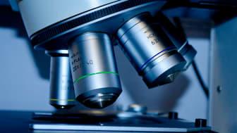 Dubblerat belopp till forskning och utveckling om prostatacancer