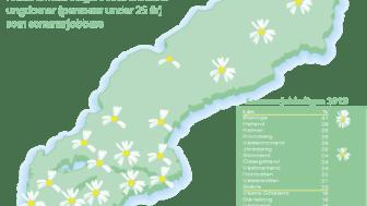 Många hinder för sommarjobb hos småföretagare