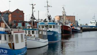 HaV föreslår nu att ett system med överlåtbara och individuella fiskerättigheter införs i det demersala fisket, alltså fisket efter bottenlevande arter.