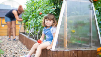 Plantagen opettaa lapsille kasvien kasvattamisesta