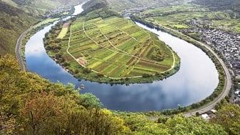 Moselle wine region – Moselle loop; ©Deutsches Weininstitut GmbH; F: Deutsches Weininstitut