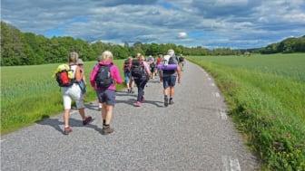 Sommarens pilgrimsvandring i Arboga-Lindesberg blir dagsvandringar