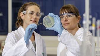 FUCHS Labtekniker