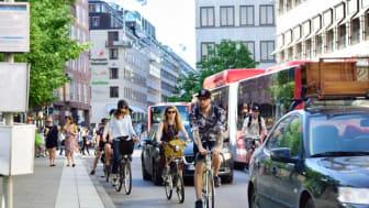 Plattform blir Råd för hållbara städer