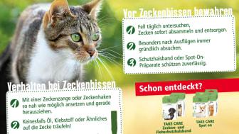 Infografik: Zeckenschutz bei der Katze