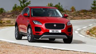 Ny baby-Jaguar