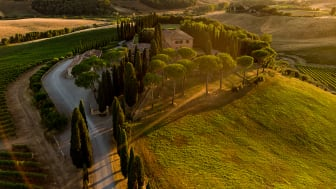 Brunello di Montalcino till primörpris hos Winefinder