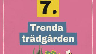 Tips 7: Trenda trädgården!