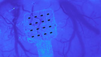 Graphene sensors will enhance our understanding of the brain (Credit: ICFO/Ernesto Vidal)