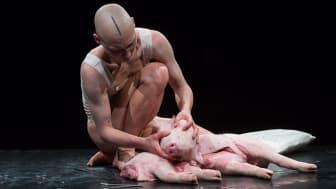 På årets CLICK Festival lader slovenske Betina Betina Habjanič det døde dyr genopstå i en stærk og poetisk performance.