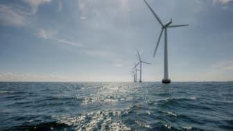 Forbindelsen fra Thor havvindpark til land konkurrenceudsættes