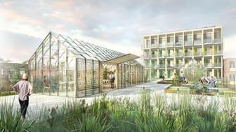 Vision i Värtahamnen, Växthus