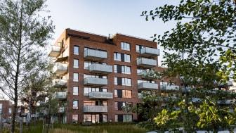 Blant 40 påmeldte, er Krydderhagen blant de tre finalistene til å stikke av med årets arkitekturpris. Foto: Øyvind Haug