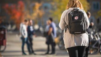 Från 30 september blir det möjligt med undervisning för fysisk närvaro för alla studenter och arbete på arbetsplatsen för samtliga medarbetare vid Umeå universitet. Foto: Mattias Pettersson