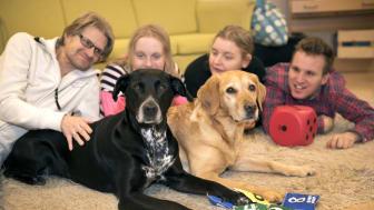 Det blev de två blandrastikarna Bella och Wilma som fick utmärkelsen Årets sociala tjänstehund 2017. Foto: Urban Brådhe