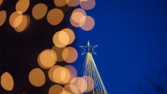 Lisebergs julgran
