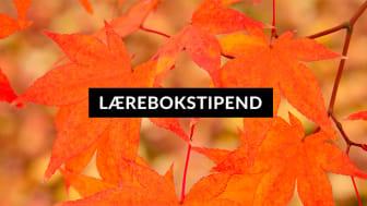 Landing-Lærebokstipend-autumn.jpg