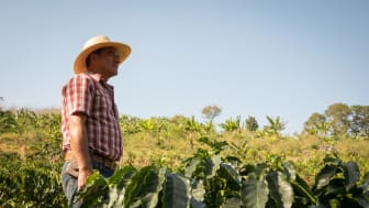 We remain committed to support smallholder coffee farmer families