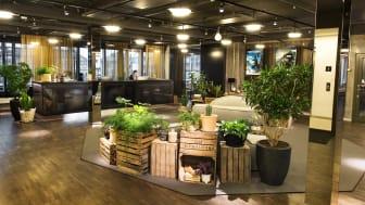 Avalanche Studios Stockholm Office Reception 1