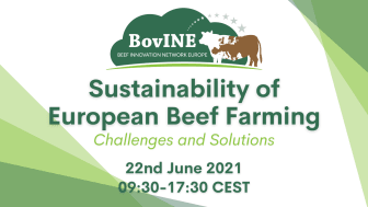 Identifying Practical 'On Farm' Innovations that meet the needs of European Beef Farmers - that's the mission of the EU funded BovINE Network