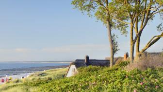 Ahrenshoop: Utsikt over stråtakene i den tidligere kunstnerkoloni ved Østersjøen