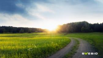 Svebio har utarbetat en färdplan för bioenergi, som visar hur en ökad efterfrågan på bioenergi för ett fossilfritt Sverige kan mötas.