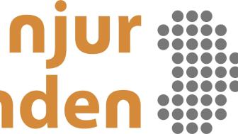 Linköpingsforskare med i rekordutdelning till njurforskning