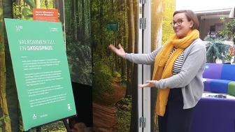 Skogspaus, en virtuell skog för avkoppling