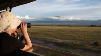 Juniorsafari i Kenya
