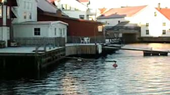 Julhälsning från Klädesholmen Seafood